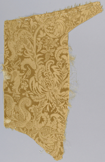Champagne-colored dress silk with a lace pattern.