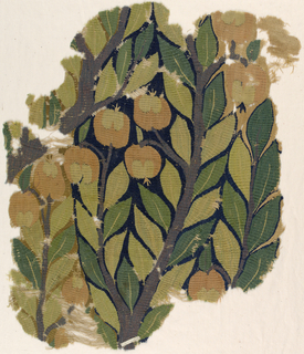 Polychrome image of branches with leaves and fruit.
