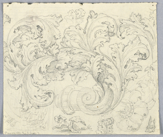 Ornament sketch with large, curving acanthus leaves and other vegetal designs.