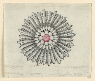 Jewelry design for a brooch in the form of a sunflower. In the center, a red diamond with a face. Smaller round and teardrop-shaped diamonds and petals radiate outwards.