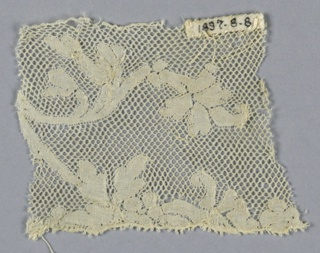 Fragment of Valenciennes lace has a branch with leaves and flowers.