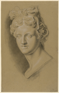 """Study of a cast of a classical female bust, seen frontally. Her wavy hair is arranged in a style resembling a bow on top of her head. Possibly the """"Venus Capitoline."""""""