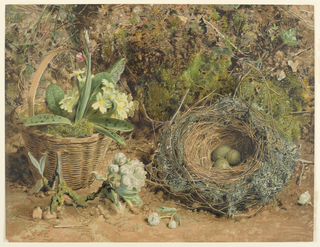 Corner of a flower bed, with a bird's nest containing three (thrush's?) eggs. At left, a basket with some tuberous plants in it for transplanting. Publisher's name, lower right corner.
