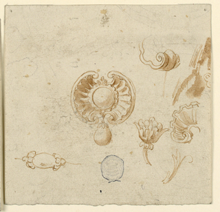 In the center, a project for a brooch with a round stone framed by a calyx, with a palmette on top and shell-like wings. Hanging from this, a pearl. Surrounding sketches of shells and floral motifs.