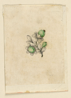 Drawing, Design for pin, 1770–80