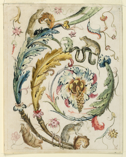 Single scroll of a foliate arabesque, with four rodents shown climbing over the vines, and a snake curled about a tendril, beneath one rat.  Copied motif from Raphael's Vatican loggia.