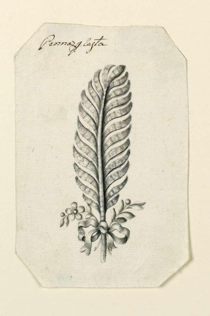 Jewelry design for a hairdress in the form of a feather. Below at left, a stem with a blossom, a bead, leaves; at right a stem with bead and leaves, fastened to a long feather by a knotted ribbon. Beveled corners.