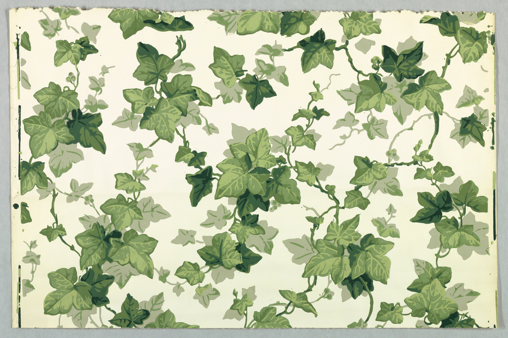 Twisting ivy leaves, branches and tendrils in all-over pattern. Five shades of green, beige, on glazed white ground.