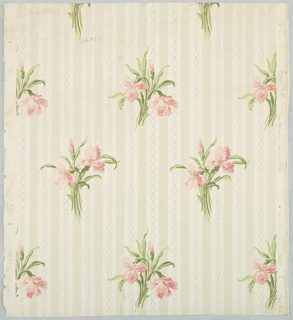 "Iris design in clusters of two blossoms and one bud in rose with green leaves. These clusters alternate in parallel rows. The background consists of gray and ivory stripes. Running through the ivory stripe are two inter- facing wavy lines in frosted work. Printed in green, pink, and gray on ivory field. Printed in margin: ""Robert Graves Co. -6166 C""."