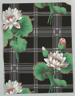 Floral wallpaper design with large pink and white flowers on stem, green foliage with pink outline. Printed on black and gray plaid background.