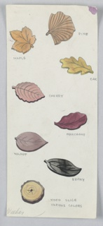 On a single sheet of paper: 8 drawings of various types of  leaf-shaped pieces of wood (pine, maple, oak, cherry, mahogany, walnut, ebony, woodslice) to serve as button designs.
