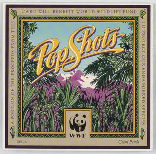 Pop-up Card, Giant Panda