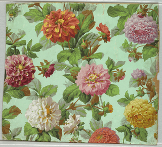 On pale green ground, tangle of dahlias, orange, pink, lavender, yellow.