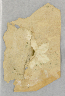 Many fragments with design of leaf clusters printed on a  beige ground.