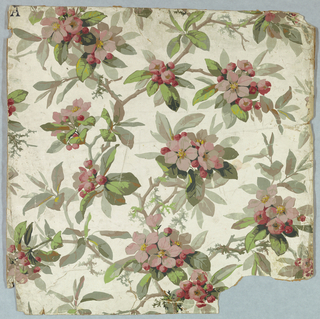 On glossy white ground, naturalistic apple blossoms joined by twigs. Printed in gray-green and pink.