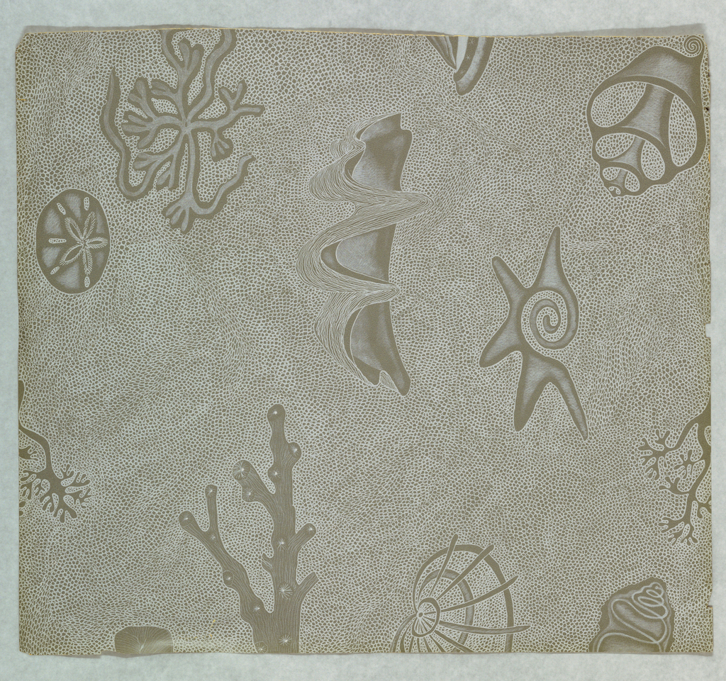 """Motifs of seashells, coral and sand dollars, printed in white on deep taupe ground. Object name changed from """"x"""" to """"y"""" (for Feeding Desire Exh. May 06)"""