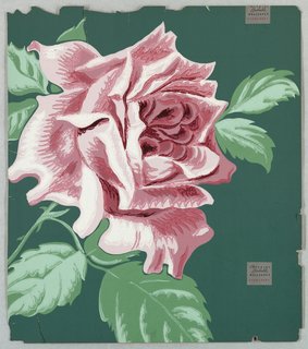 Large-scale rose motif. Rose printed in mauve with green leaves against darker green ground.