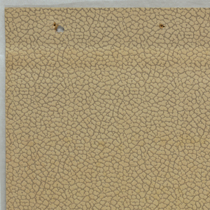 Tan colored paper embossed with pebble texture