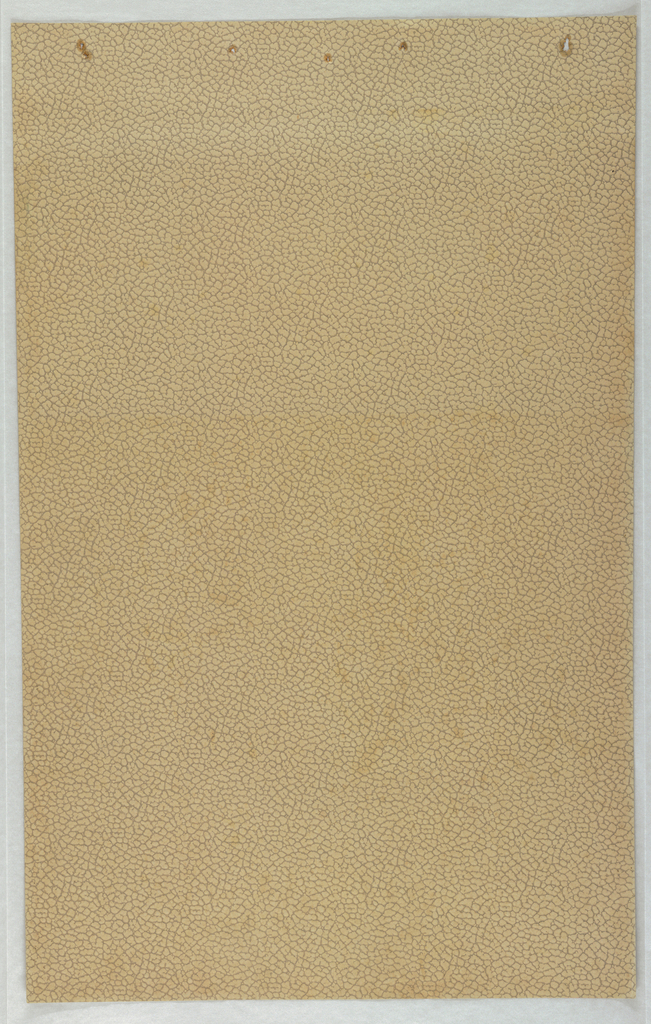 Unprinted, tan ground paper embossed with leather texture. Darker pigment in recessed areas.