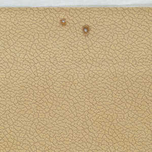 Tan paper embossed with pebble texture