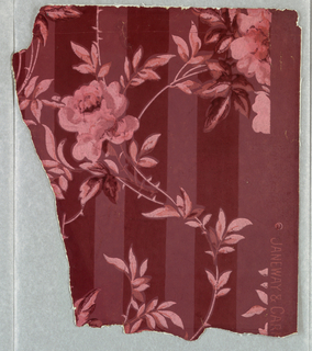 Striped field with serpentine floral or rose pattern. Printed in shades of pink on pink ground.
