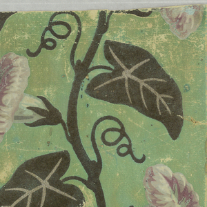 Horizontal rectangle. Paper sown with repeating conventionalized daisies with leaves. Border printed with morning-glory vine, with violet and white flowers and leaves in dark green flock, edged with conventionalized morning glories set between serpentine lines.
