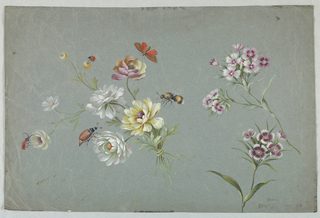 Floral designs, realistically rendered, with butterfly, a large bee and beetles. Painted on a blue-green ground.