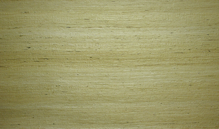 A fine weave of tan or light green tint grasscloth with no printed design.