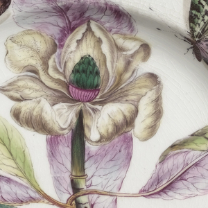 """A plate with a wavy, brown-edged rim. Botanical decoration of a Magnolia. Thick purple and green stem with yellow, green, and purple lanceate leaves. Large flower with yellowish curling petals and cone-shaped purple and green pistil. Sprigs of yellow and blue flowers. Two large butterflies, one moth. The decoration after Georg Dionysius Ehret (1708-1770), PLANTAE SELECTAE, 1770-1773, Tab.IX,  """"Magnolia..."""""""