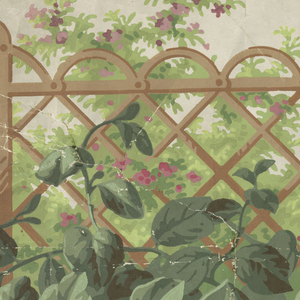 Above edge lines of brown and gray, brown trellis work or fence with big leaves in front, flowering bushes with pink blossoms behind.