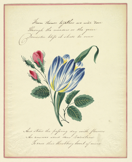 Folio.  Spray of flowers, tulip and roses, three lines of verse and three below the flower motif, written by hand.  Floral embossed border, with Cupids in corners, with French inscritpions, also embossed.  Narrow color border.