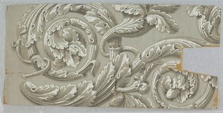Incomplete repeat of acanthus rinceau in grisaille on gray ground.