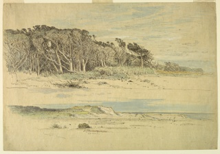 Horizonal view of a deserted beach divided by a framing pen line into upper and lower sections: in top section a cedar wood is shown in left middle distance under a cloudy blue sky.  Sand and weeds are in the foreground, with the sea at right rear; in bottom section a view of the sea is shown from the shore, with a narrow, sandy stretch in foreground, dunes in the central middle distance, and a wood in left background.