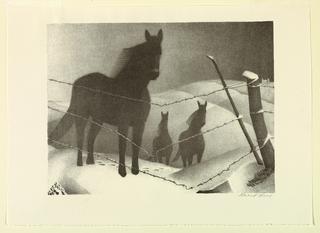 Print, February, 1941