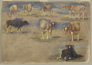 Creamy and brownish grounding colors. Top row, left, a grazing cow shown from the head; center, two standing cows shown oblique from the head; right, a cow shown in profile turned toward left. Center row, at left, a cow walking toward right; center, a cow shown from the right front; at right, a cow shown from the left front. Lower right, a crouching cow shown the head.