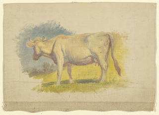 A standing white cow, shown in profile, with the head turned slightly inwards. Hilly country. Irregular margins of creamy grounding color. Canvas margin at the bottom.
