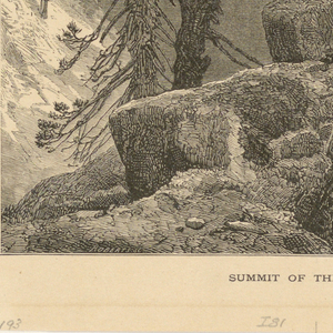 View of mountainous landscape with snowy peaks in background, pine trees in middle ground, and rock formations in foreground.