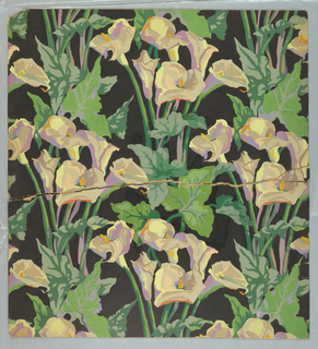 Calla lilies on a slate-colored background.