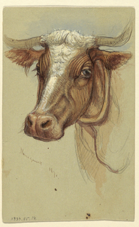 Vertical rectangle.  Obverse: Oblique view of a grazing ox and the center part of his body, shown in profile, turned toward left.  The hind legs and an eye are shown respectively in the top corners.  The upper part of the body when going under the yoke is shown form the front, center right.  Three busts of men, one of them slightly sketched.  A cart with two wheels.  Reverse, in opposite direction:  The head of an ox, slightly oblique, shown from the left side.