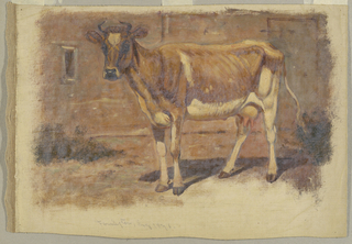 Painting, Studies. Cows, August 1876