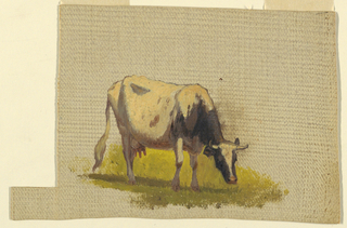 Light grey grounding color. Lower center, a grazing cow obliquely shown from the right front.