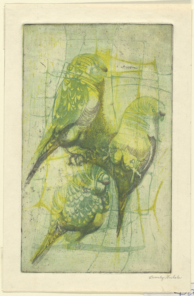 Etching, Three Parrots