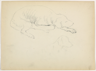 Drawing, Milo (a Pointer), Two Studies, ca. 1862