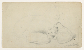 Drawing, Cat and Three Kittens; Verso: Arab Man Seated Receiving a Man, Possibly after David Roberts, 1844