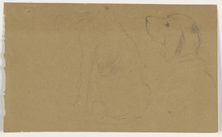Drawing, Dash (a Setter), Head and body, ca. 1862