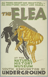 Poster design for the London Underground, advertising the Natural History Museum which can be reached by the railway. At center, a large flea seen in profile casting a double shadow in taupe and brown on cream ground. Text in green, brown, and gray, upper center: ALL THINGS BRIGHT AND BEAUTIFUL / ALL CREATURES GREAT AND SMALL / THE FLEA; lower center: AT THE / NATURAL HISTORY MUSEUM / SOUTH KENSINGTON BY / UNDERGROUND.