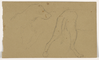 Drawing, Milo (a Pointer), Head and Body, ca. 1862