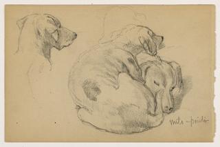 Drawing, Milo (a Pointer) Three Studies, Milo (a Pointer) Two Studies, ca. 1862