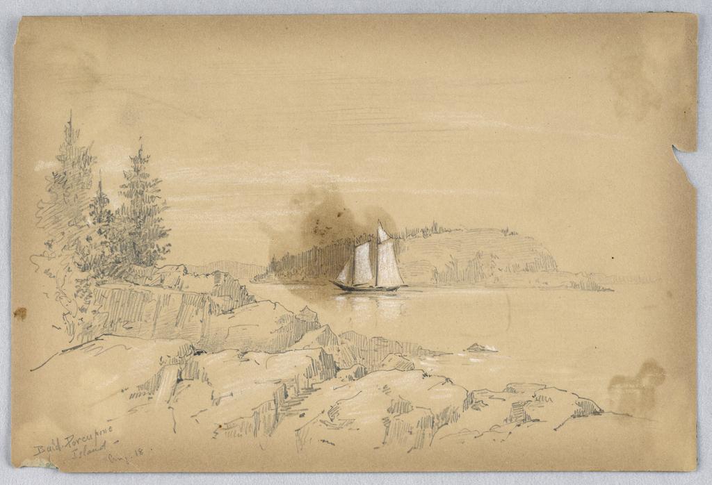 Drawing, Bald Porcupine Island