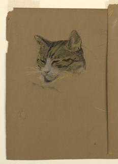 Study of a cat's head, turned one-quarter to the left, with its eyes clsoed and ears up.